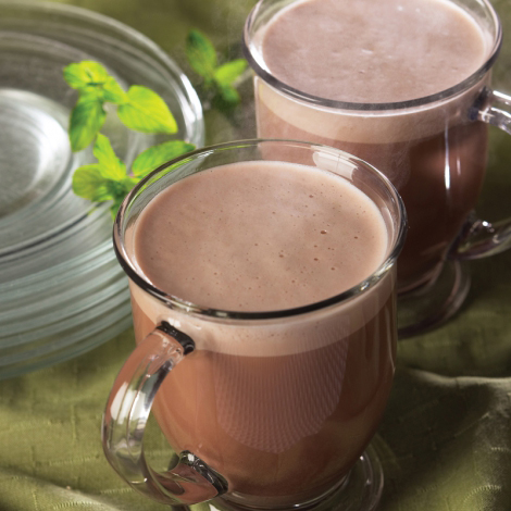 Mint Hot Chocolate Protein Packets